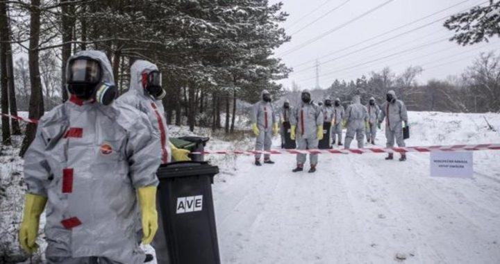 Expertos alertan del peligro del virus de la gripe aviar H5N8