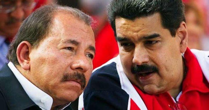"""Díaz-Canel, Ortega, Maduro y Bolsonaro, """"depredadores de la prensa"""" para RSF"""