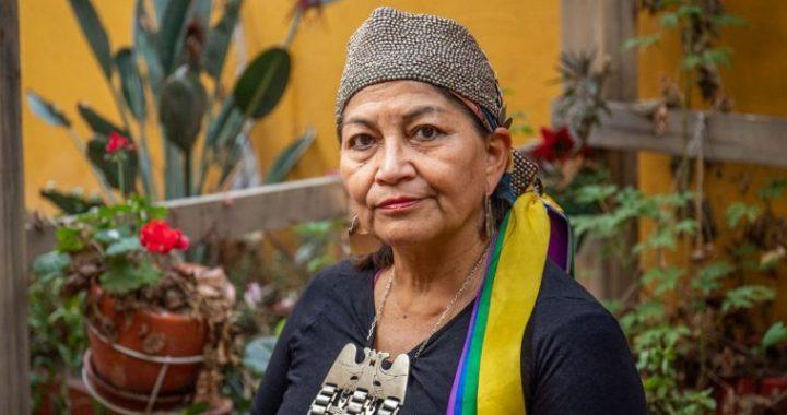 La Mapuche Elisa Loncón, elegida presidenta de la Convención Constituyente de Chile